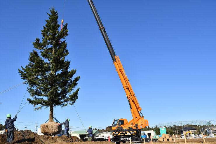 オオソラモ土気のシンボルツリーのモミの木が植樹されました